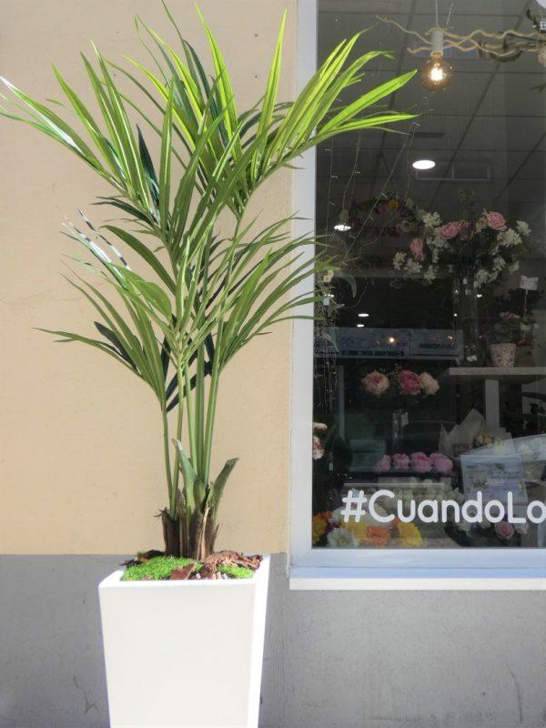 La palmera Kentia artificial, un recurso maravilloso sin preocupaciones y sostenible
